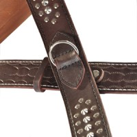 Leather collar for large breeds